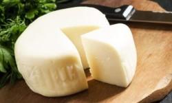 Сыр сулугуни: все, что вы хотели знать