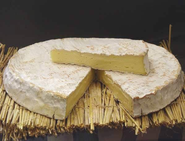 Brie-de-Melun-5
